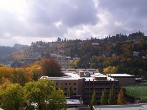 Fall colors from atop CHNN World Headquarters today